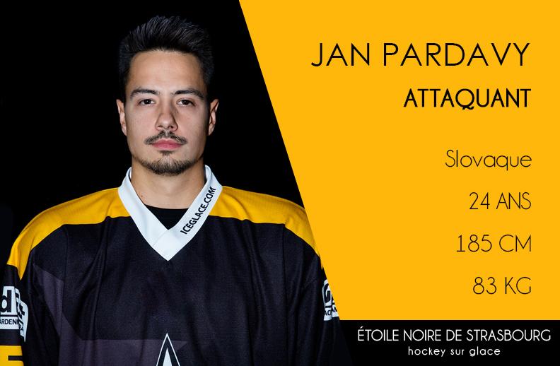 Pardavy